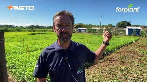 Depoimento do Professor Valdo Herling da USP/FZEA